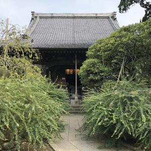 鎌倉七福神巡り「宝戒寺」 北条氏屋敷跡と鎌倉幕府終焉の地