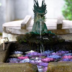 あじさい寺の花手水
