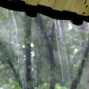 雨が降っています パート2