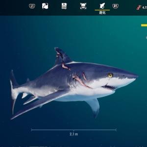 サメゲーム MANEATER
