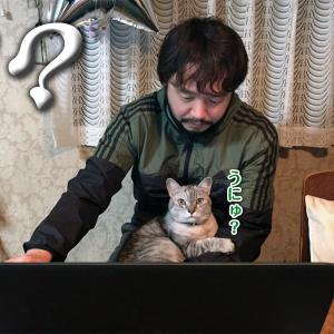 在宅勤務中の動物たち 【後編】