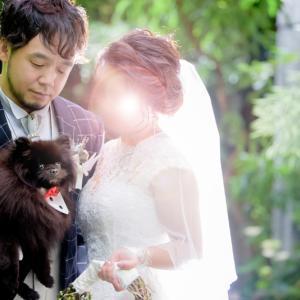事務的な撮影会【中編】~ 結婚式ララバイ④