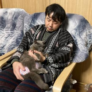 石像猫の闘病生活