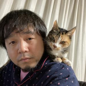 肩乗り猫でもう少しお待ちください