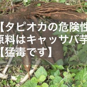 【タピオカの危険性】原料はキャッサバ芋【猛毒です】