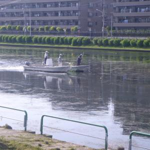 お散歩-2 ボートの戸田