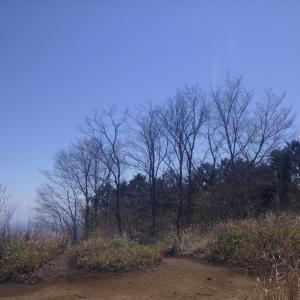 棒ノ折-3 岩茸石山で大山