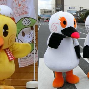 「ひなちゃん」と「こうのとり伝説」の街、埼玉県鴻巣市