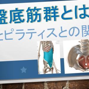 骨盤底筋群とは?その役割とピラティスとの関係