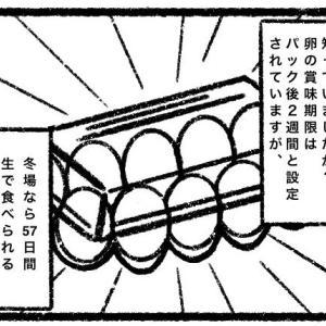 【読書感想漫画】卵の賞味期限は二週間ではない!!!