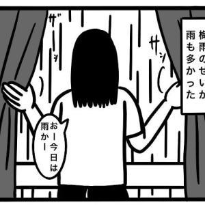 【梅雨】雨の日が続くと洗濯できなくて終わる