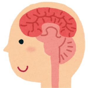 脳ってすごい!