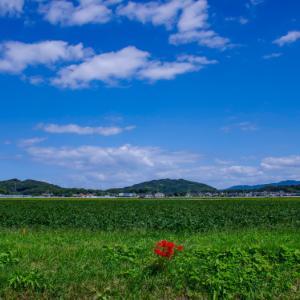 糸島の景~いとしまのしらべ⑤⑨