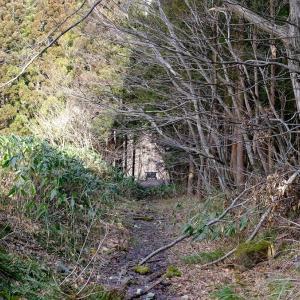 定義森林鉄道の大橋梁