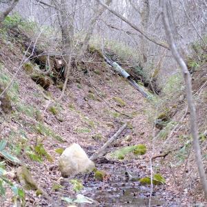 定義森林鉄道跡の廃木橋群 その3