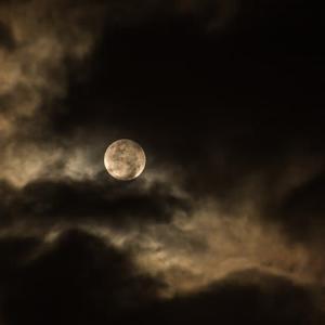 ベートーベンイヤーに「月光ソナタ」