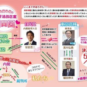 【芸能】きゃりーぱみゅぱみゅ「検察庁法改正案に抗議します」SNS・・・!