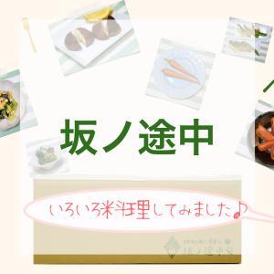 【体験レビュー】坂ノ途中の野菜宅配サービスを利用した感想!