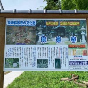 6月27日 福井観光2日目・・・称念寺