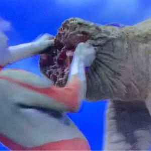 ゴモラの悲劇性「怪獣殿下 後篇」〜『ウルトラマン』