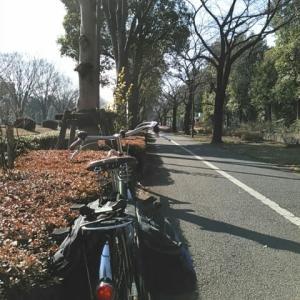 自転車の安全走行 (その5) 暗い道は注意する