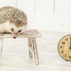 ビジネスゲームの基本ルールと時間の正体