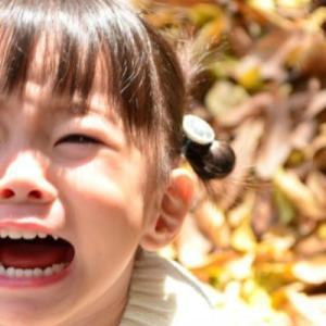 【魔の2歳児】イヤイヤ期の乗り越え方