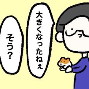 4コマ漫画「デカくなる」