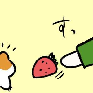 4コマ漫画「いちご」