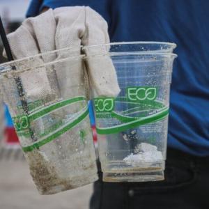 マレーシアのプラスチック消費量が多いのは持ち帰り文化が原因 WWF調査