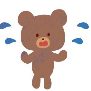 新ブログ5か月目の様子!