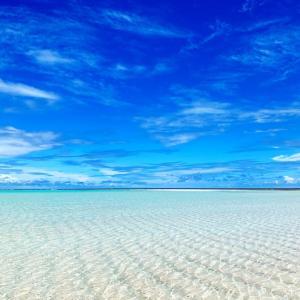 【固定記事】2020年 百合ヶ浜出現 ★予想スケジュール