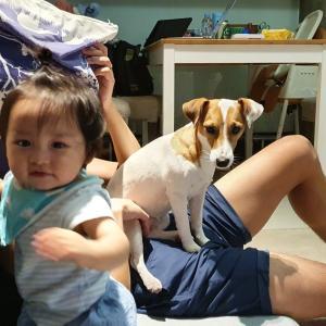 1歳になった息子と4歳ジャックのバンコク生活。