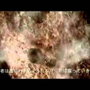 オーストラリア禁煙CM(日本語字幕付) COPD(肺気腫)編