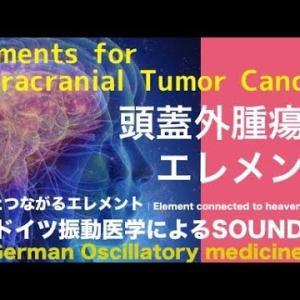 🔴ドイツ振動医学による頭蓋外腫瘍編|Extracranial Tumor Cancer by German Oscillatory Medicine.