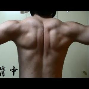 たばこ病、患者増大。 禁欲×筋トレ#206-Muscle Vlog-