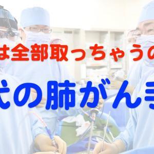 現代の肺がん手術