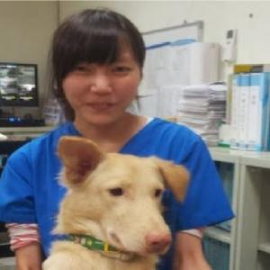 【衝撃】安楽死の薬を自分に注射した獣医…遺されたメッセージが辛すぎる!