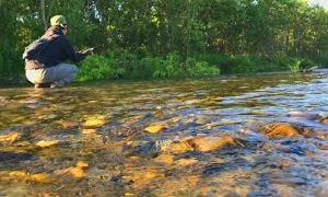 川釣り!暑い日に十勝の下流を攻めたら○○の猛攻を受けた件 ルアーフィッシング