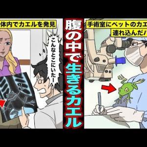 【漫画】手術の手違いで切った腹にカエルが入ってしまうとどうなるのか?カエルがお腹にいると知らずに密閉してしまったバカ医者の末路・・・