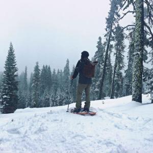 旅行記:冬のヨセミテ 後編 (スキー&スケート)