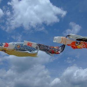 【ゴールデンウィーク】谷地漁港で魚釣りとおはじきアートと鯉のぼり@宮城