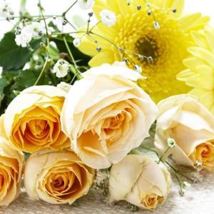 大切な女性に花を贈ろう センスがない男性のためのプレゼント入門