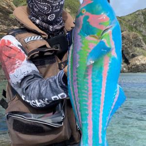 「とんでもない色の魚が釣れた」「絵筆洗うバケツの中みたいな色」 沖縄で釣り上げられたド派手怪魚の正体とは