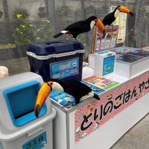 """掛川花鳥園にいる""""圧強めの店員さん""""が話題…「お金はここに入れて」どんな接客か聞いた"""