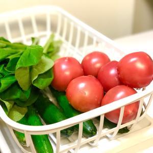 買い出しの日のひと仕事。洗われる野菜たち