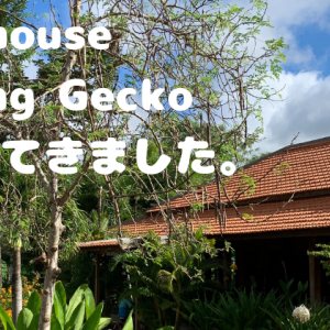 プノンペン近辺の観光地、Farmhouse Smiling Geckoに行ってきました。