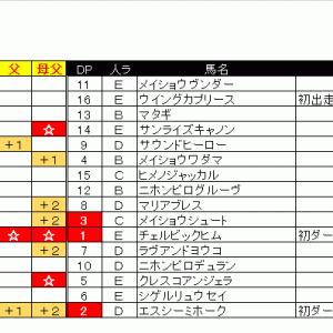 06/13(土)出馬表&本命馬