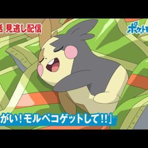 【公式】アニメ「ポケットモンスター」第70話「おねがい!モルペコゲットして!!」(見逃し配信)