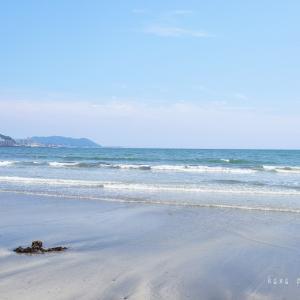心のままに*静かな鎌倉の海